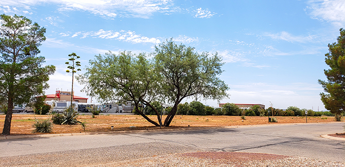 RV Park In SouthEastern Arizona